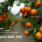 orange grove with text: Western Center for Agricultural Health and Safety Seminar Series 2020-21